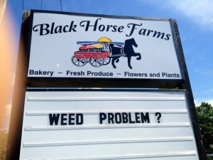retail signage humorous funny