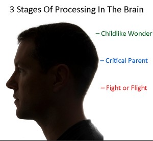 3-stage processing brain