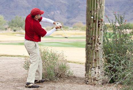 retail sales management Dick's sporting PGA