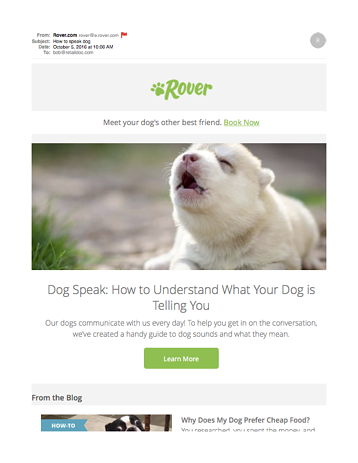 How to speak dog-rover2