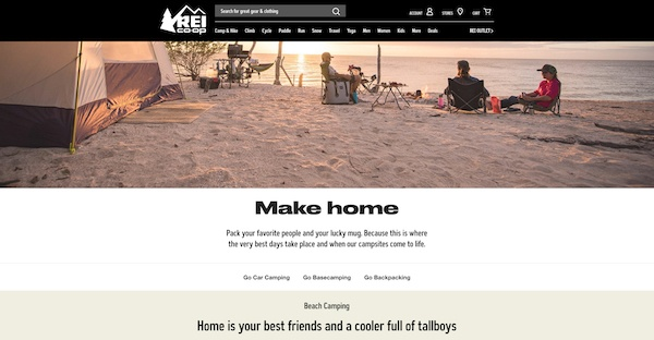 REI website example